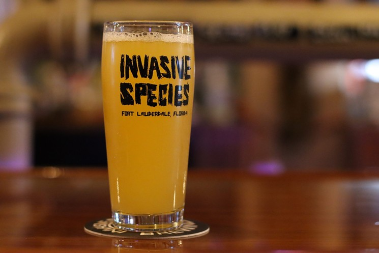 Invasive Species offers hard seltzer on draft. - PHOTO BY NICOLE DANNA